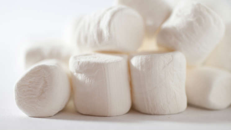 Vegan Marshmallows: An Exception to the Rule | greengopost.com