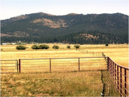 Jamison Ranch in California's Sierra Valley, an Acres for America project