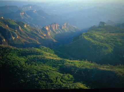 Saddle Mountain Arizona, another Walmart-Acres for America venture