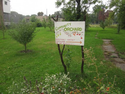 an orchard on the way, Detroit