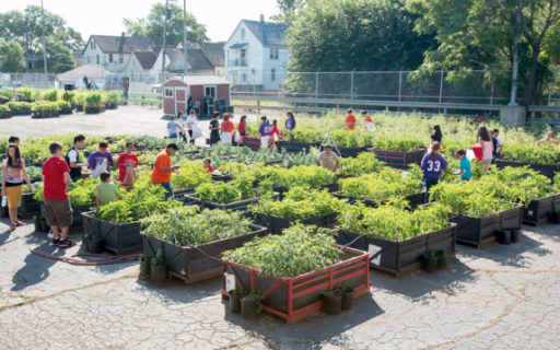 How GM Helped Convert a Detroit Vacant Lot Into an Urban Garden