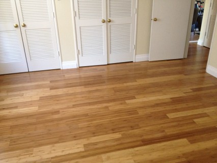 fig garden project, Fresno, carpet, bamboo flooring, LED lights, San Joaquin Valley, cabinet stripping, cork tiles