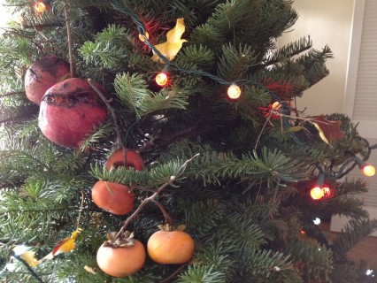 christmas tree, DIY, Leon Kaye, Fig Garden Project, San Joaquin Valley, Fresno, pomegranates, persimmons, Fuyu persimmons, hachiya persimmons, Reedley, Parlier, Christmas in Fresno, foraging, fruit forage, Whole Foods