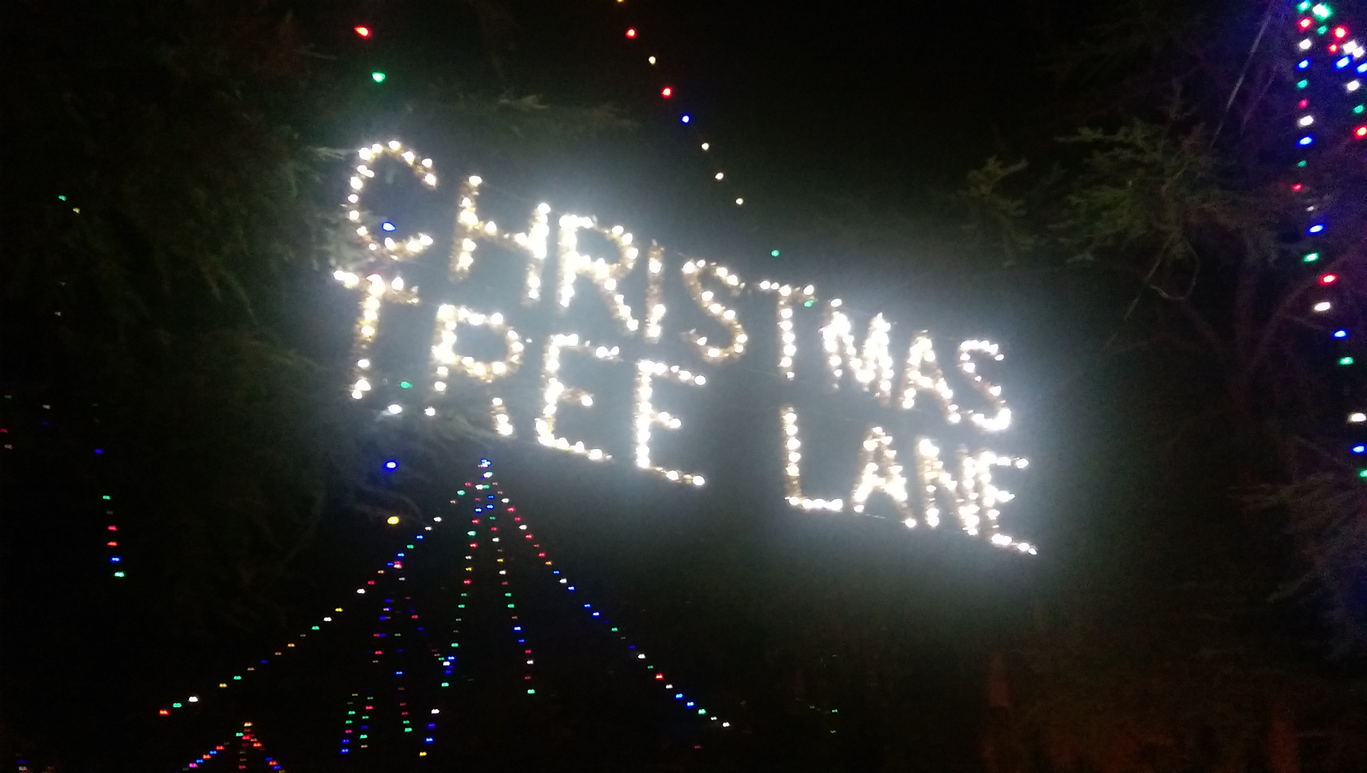 95 years later christmas tree lane in fresno still bursts with holiday cheer greengopostcom